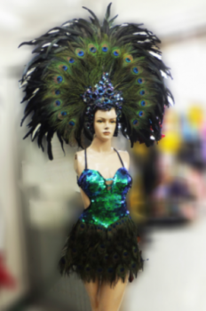 T014 Peacock Headdress Costume Set