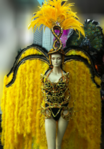 C0003 Feather Rio Costume Set