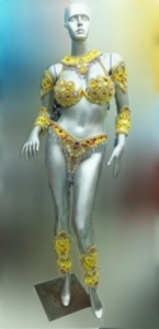 T017  Carnival Brazilian Rio Carnival Samba Dance Costume  Warrior Princess Costume
