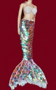 C053 Mermaid Costume Set