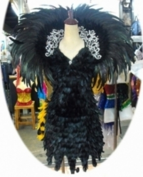 Showgirl Feather Backpack and Dress