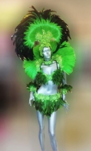 C0272 Carnival Rio Feather Showgirl Headdress Costume