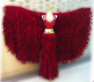 C070F Feather Red Bird Showgirl Coat Showgirl Gown Showgirl Coat
