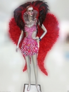 C084 Carnival Brazilian Rio Carnival Samba Dance Costume  Fairy Valentine Feather Angel Wings