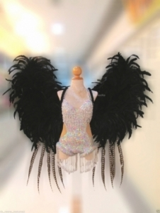 C578 The Sexy Black Angel Costume Set