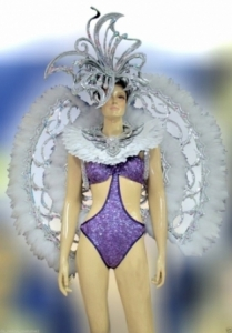 C580 Winter Butterfly Princess Costume Set