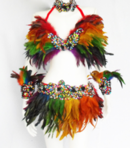 FTR Gay Pride Parade Showgirl Bra Skirt Costume
