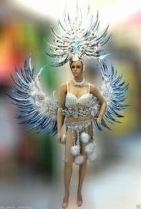 C610 Victoria Angel Bird Costume Set Feather Angel Wings