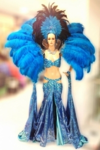 C662 Queen of Paradise Crystal Costume set