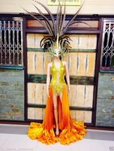 C104 Burlesque Warrior Lady Pheasant Feather Showgirl Dress Goddess Headdress Skirt