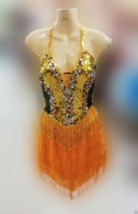 M120 Glittering Latin Showgirl Tango Salsa Dance Dress