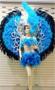 C716 Heaven Bird Angel Costume Set