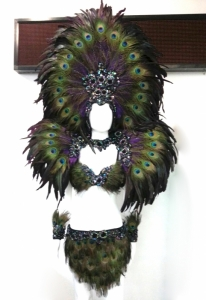 EVIAN Peacock Bra Skirt Showgirl Headdress Backpack Costume Set