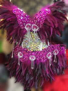 FTR Feather Carnival Brazilian Rio Showgirl Bra Skirt Costume size 1X