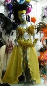 C021 Feather Costume Set
