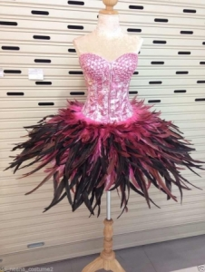 M118 Flying Bird Pink Lady Crystal Dance Showgirl Dress