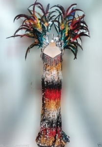 C093 Queen of Parrot Gay Pride Feather Showgirl Dress Gown Showgirl BackpackCostume set