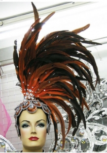 H0229 Wonder Bird Pageant Feather Headdress